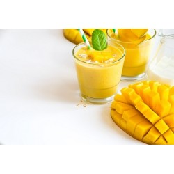 KONCENTRAT SQUIZZY MANGO CHILLOUT